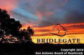 2607 Palomino Springs, Bandera, TX 78003 (MLS #1428538) :: Alexis Weigand Real Estate Group