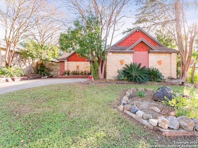9602 Clear Fls, San Antonio, TX 78250 (MLS #1428605) :: BHGRE HomeCity