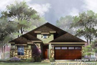 28806 Bluebottle, San Antonio, TX 78260 (MLS #1428638) :: BHGRE HomeCity