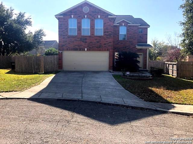 13642 Mason Crest Dr, San Antonio, TX 78247 (MLS #1428654) :: The Gradiz Group
