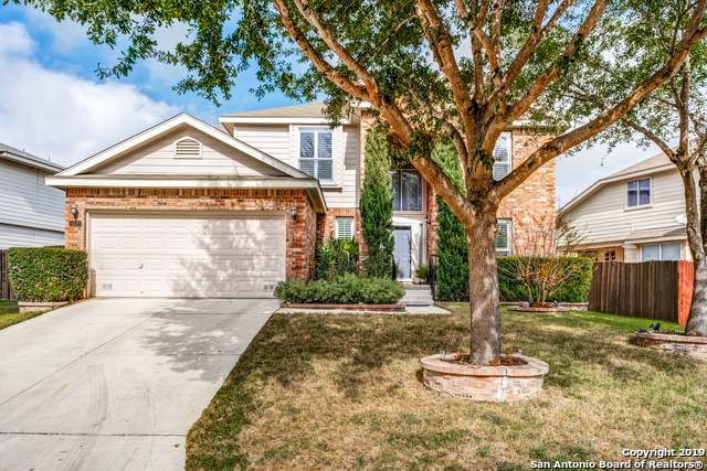 4019 Ogelthorpe Oak, San Antonio, TX 78223 (MLS #1428719) :: Alexis Weigand Real Estate Group