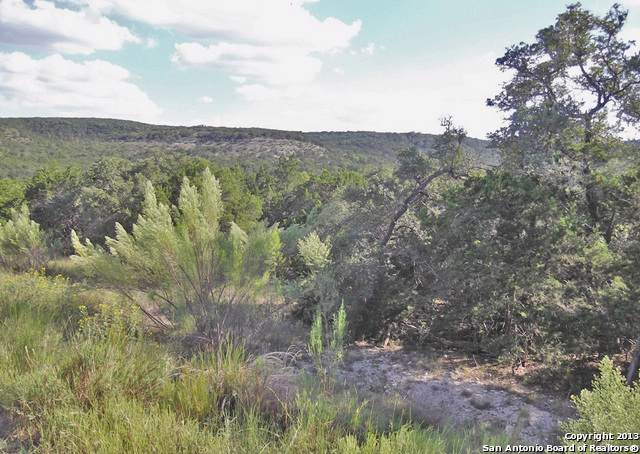 950  (LOT 627) Moonlight Dr, Canyon Lake, TX 78133 (MLS #1428735) :: Erin Caraway Group