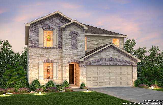 424 Holly Bush, New Braunfels, TX 78130 (#1428743) :: 10X Agent Real Estate Team