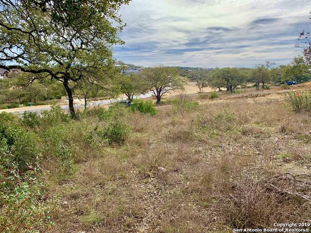 23123 Norfolk Canyon, San Antonio, TX 78255 (MLS #1428776) :: BHGRE HomeCity