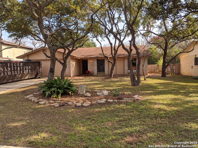 13918 Marble Tree St, San Antonio, TX 78247 (#1428938) :: The Perry Henderson Group at Berkshire Hathaway Texas Realty