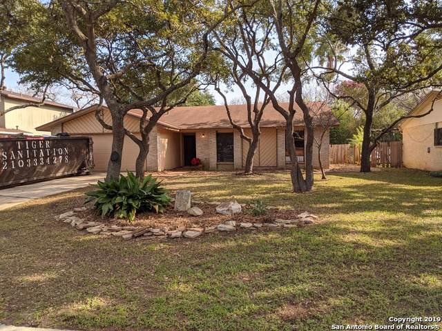 13918 Marble Tree St, San Antonio, TX 78247 (MLS #1428938) :: BHGRE HomeCity
