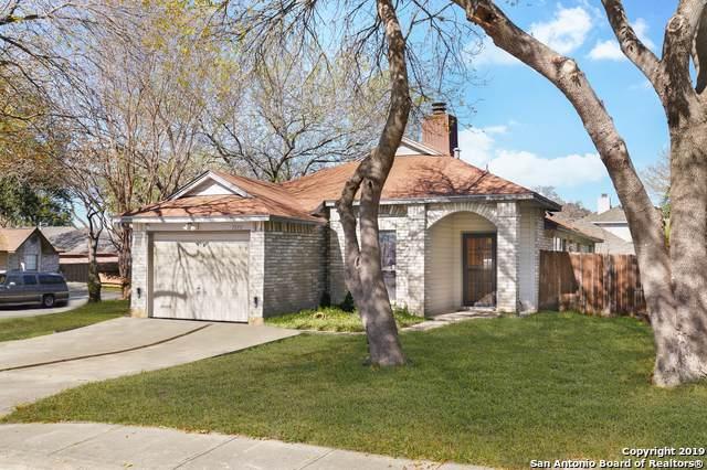 7575 Beaver Tree, San Antonio, TX 78249 (MLS #1428945) :: ForSaleSanAntonioHomes.com