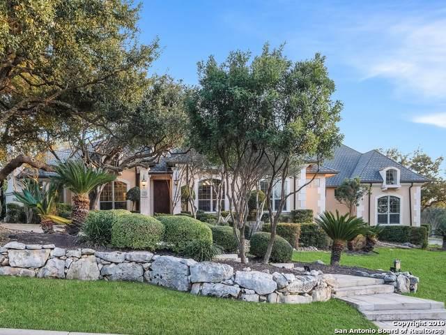 17 Caleb Circle, San Antonio, TX 78258 (MLS #1428978) :: ForSaleSanAntonioHomes.com