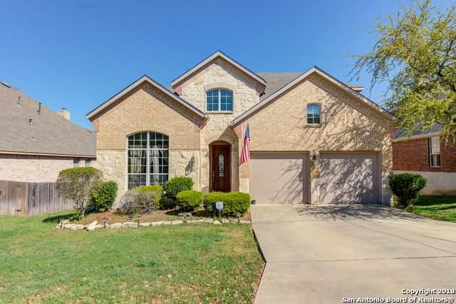 26010 Alto Cedro, San Antonio, TX 78261 (MLS #1429336) :: BHGRE HomeCity