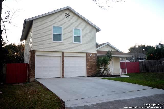 3510 Ridge Knoll St, San Antonio, TX 78247 (MLS #1430088) :: Alexis Weigand Real Estate Group
