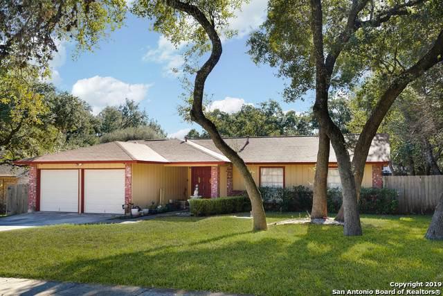 8326 Timber Bough St, San Antonio, TX 78250 (MLS #1430478) :: NewHomePrograms.com LLC