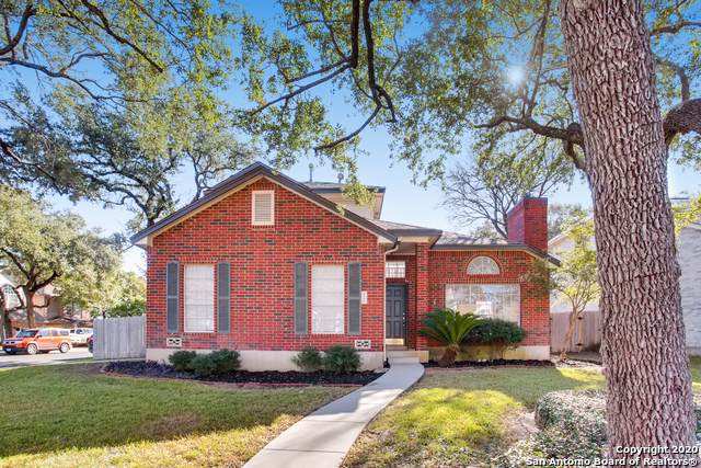2122 Chittim Trail Dr, San Antonio, TX 78232 (#1430942) :: The Perry Henderson Group at Berkshire Hathaway Texas Realty