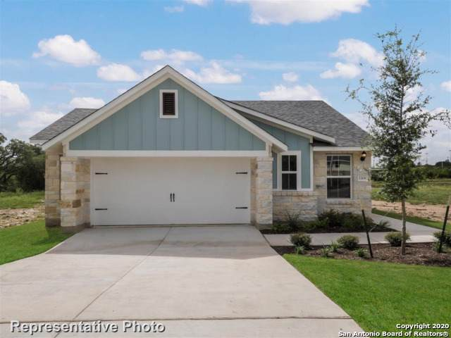 116 Horsemint Way, San Marcos, TX 78666 (MLS #1431028) :: Alexis Weigand Real Estate Group