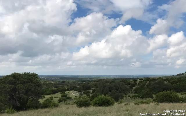 12175 Ranch Road 1623, Blanco, TX 78606 (#1431575) :: The Perry Henderson Group at Berkshire Hathaway Texas Realty