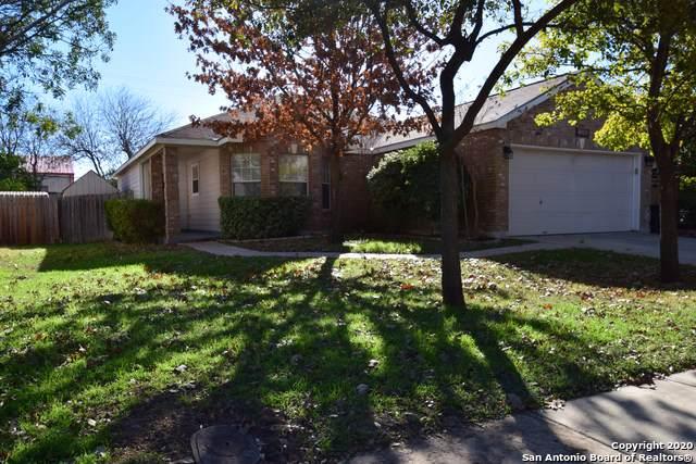 7938 Veleta, San Antonio, TX 78250 (MLS #1431920) :: Alexis Weigand Real Estate Group