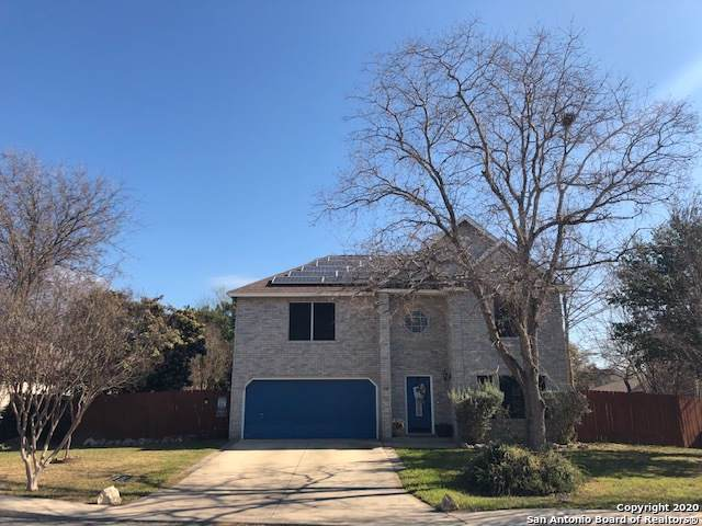 7115 Shady Elms, San Antonio, TX 78240 (MLS #1432016) :: Alexis Weigand Real Estate Group