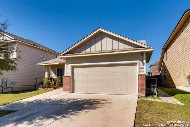 6003 Enchantment, San Antonio, TX 78218 (MLS #1432068) :: NewHomePrograms.com LLC