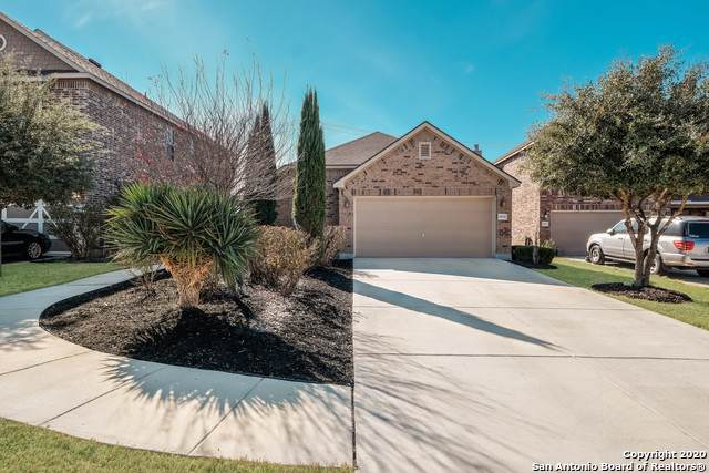 11006 Colt Isle, San Antonio, TX 78254 (MLS #1432193) :: Alexis Weigand Real Estate Group