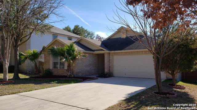 11846 Barkston Dr, San Antonio, TX 78253 (#1432312) :: The Perry Henderson Group at Berkshire Hathaway Texas Realty