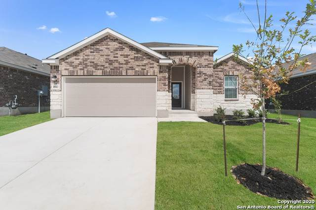 6035 Ballast Trl, New Braunfels, TX 78132 (#1432532) :: The Perry Henderson Group at Berkshire Hathaway Texas Realty