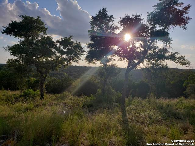 LOT 23 Canyon Rim Road, Helotes, TX 78023 (MLS #1432714) :: Reyes Signature Properties