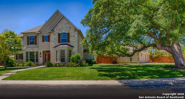 325 Cypress Trail, San Antonio, TX 78256 (MLS #1432884) :: Carolina Garcia Real Estate Group