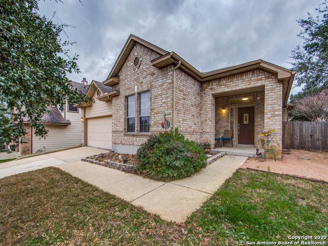 21807 Broken Elm, San Antonio, TX 78259 (#1432917) :: The Perry Henderson Group at Berkshire Hathaway Texas Realty