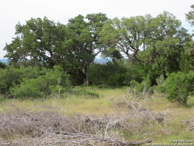 TBD Rr 1077, Bandera, TX 78003 (MLS #1433023) :: The Gradiz Group