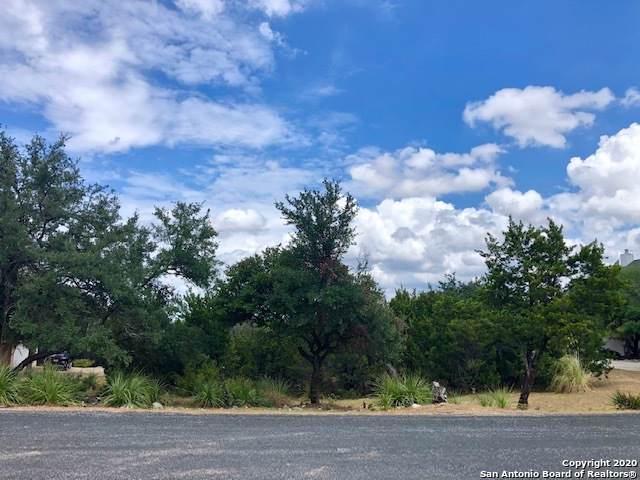 527 Breathless View St, San Antonio, TX 78260 (MLS #1433205) :: The Castillo Group