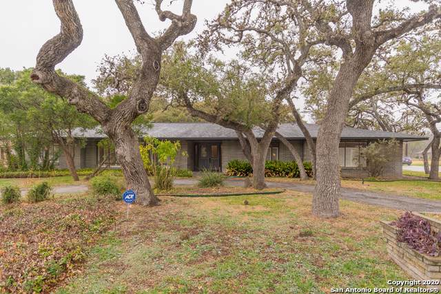 217 Prinz Dr, Castle Hills, TX 78213 (MLS #1433213) :: The Mullen Group | RE/MAX Access