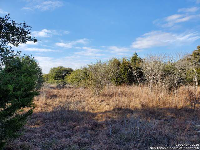 121 N Calvin Barrett, Blanco, TX 78606 (MLS #1433241) :: Alexis Weigand Real Estate Group