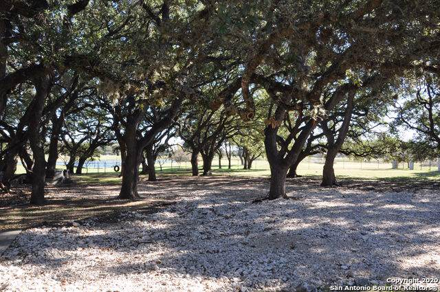 26606 Harmony Hills, San Antonio, TX 78260 (MLS #1433249) :: The Castillo Group