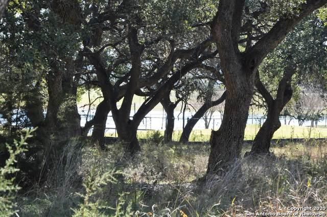 26622 Harmony Hills, San Antonio, TX 78260 (MLS #1433262) :: The Castillo Group