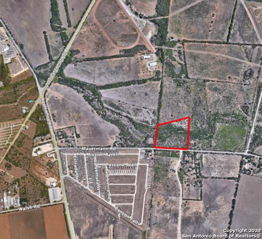9.12 ACRES Mauermann Rd - Photo 1