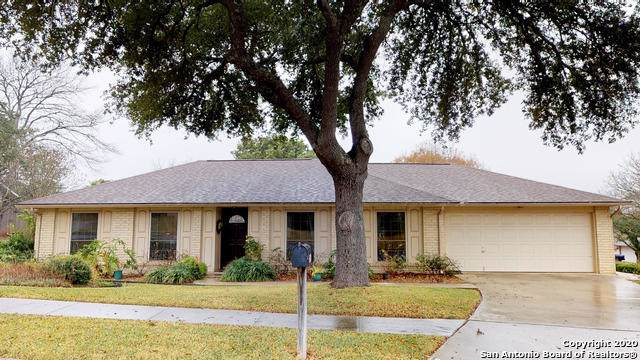 16619 Front Royal St, San Antonio, TX 78247 (MLS #1433411) :: Alexis Weigand Real Estate Group