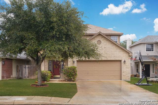20522 Tree Meadow, San Antonio, TX 78258 (MLS #1433545) :: Kate Souers