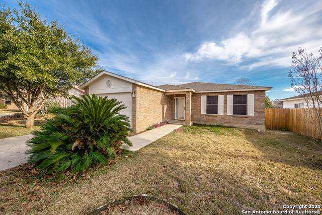 5214 Spring Ash, San Antonio, TX 78247 (MLS #1433553) :: The Mullen Group | RE/MAX Access