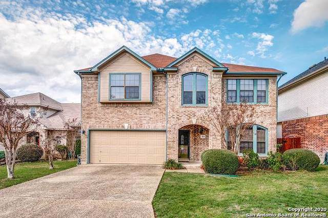 9139 Maggie Ct, San Antonio, TX 78240 (MLS #1433971) :: Alexis Weigand Real Estate Group
