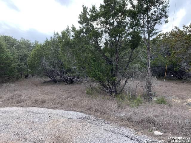 180 Sunnyside Ct, Spring Branch, TX 78070 (MLS #1434060) :: BHGRE HomeCity
