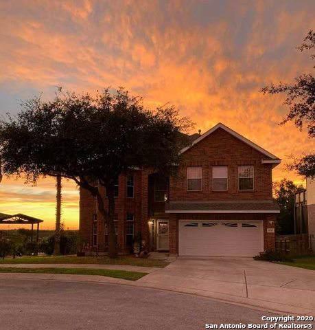 20707 Alta Mesa, San Antonio, TX 78258 (MLS #1434159) :: Alexis Weigand Real Estate Group
