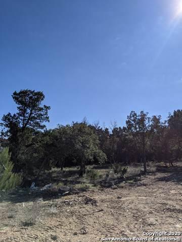 1984 Tempranillo, New Braunfels, TX 78132 (MLS #1434245) :: BHGRE HomeCity