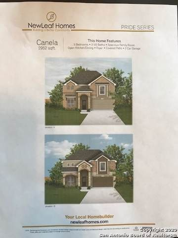 13519 Lost Elk Dr, San Antonio, TX 78245 (MLS #1434386) :: Carolina Garcia Real Estate Group