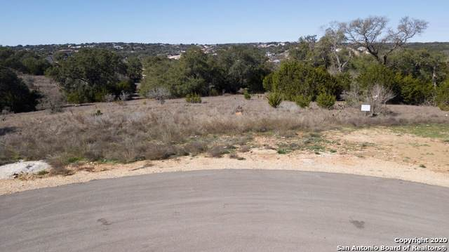 1221 Brushy Curve, New Braunfels, TX 78132 (MLS #1434518) :: Alexis Weigand Real Estate Group