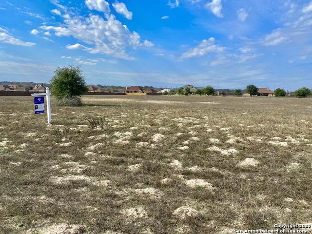 104 Abrego Mount Dr, Floresville, TX 78114 (MLS #1434681) :: The Mullen Group | RE/MAX Access