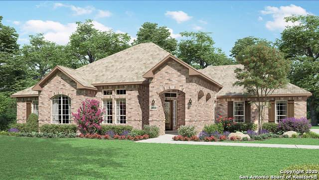 330 Hessen Way, New Braunfels, TX 78132 (#1434700) :: The Perry Henderson Group at Berkshire Hathaway Texas Realty