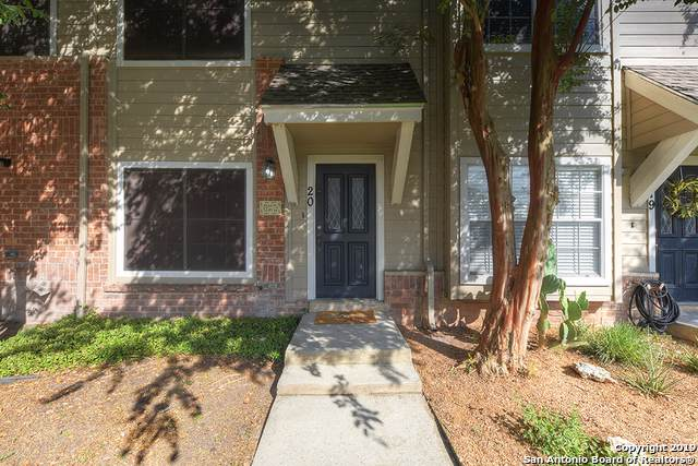 20 Cross Cyn, San Antonio, TX 78247 (MLS #1434794) :: Alexis Weigand Real Estate Group