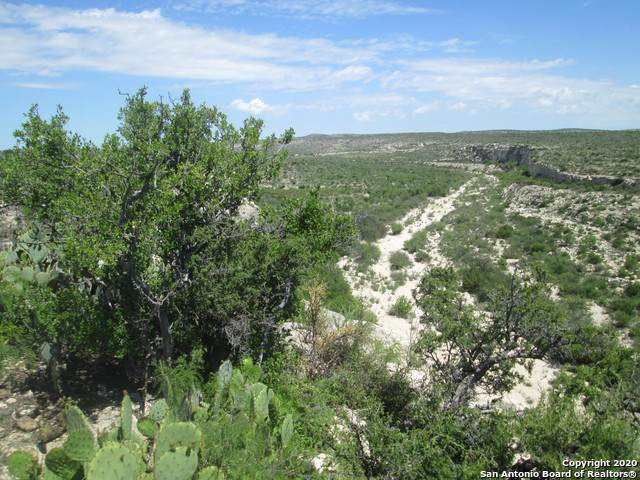 HWY 90 Hwy 90, Sanderson, TX 79848 (MLS #1434916) :: The Castillo Group