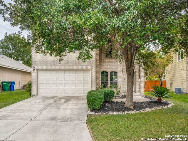 3911 Elmcroft, San Antonio, TX 78247 (MLS #1435128) :: Alexis Weigand Real Estate Group
