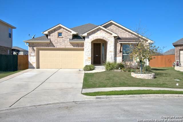 249 Leather Oak Loop, San Marcos, TX 78666 (MLS #1435199) :: Erin Caraway Group