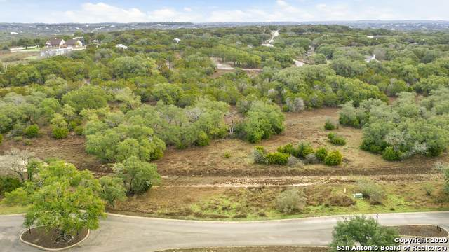 121 Sabella, Spring Branch, TX 78070 (MLS #1435260) :: Tom White Group